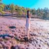 Lãng mạn và mộng mơ với Đồi cỏ hồng Đà Lạt