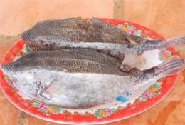 Về biển Lagi nếm cá Bò Hòm