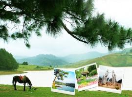 Tour Nha Trang - Da Lat Tet 2016