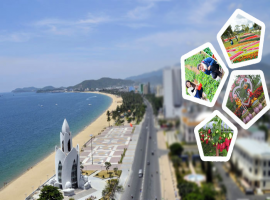 Tour du lich Nha Trang Da Lat gia re tet 2017