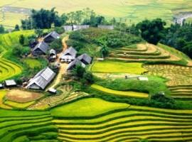 Tour Tp Ho Chi Minh - Sa Pa gia re