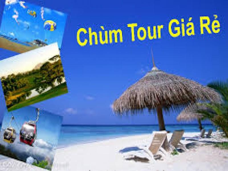 Tour Da Nang He 2016 Gia Tot Nhat