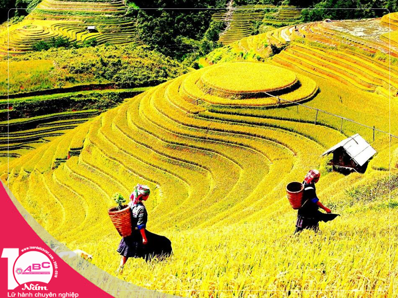 Tour du lich Thanh Hoa Sa Pa (3 ngay 2 dem)