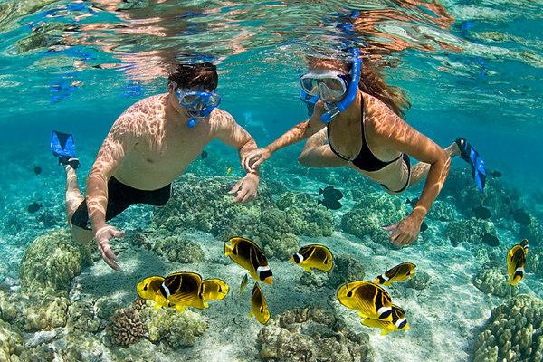 Lặn ngắm san hô Nha Trang